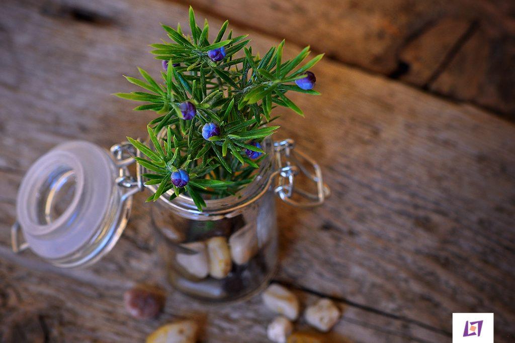 4 ideias de arranjos com flores
